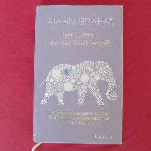 Elefantglueckvergass